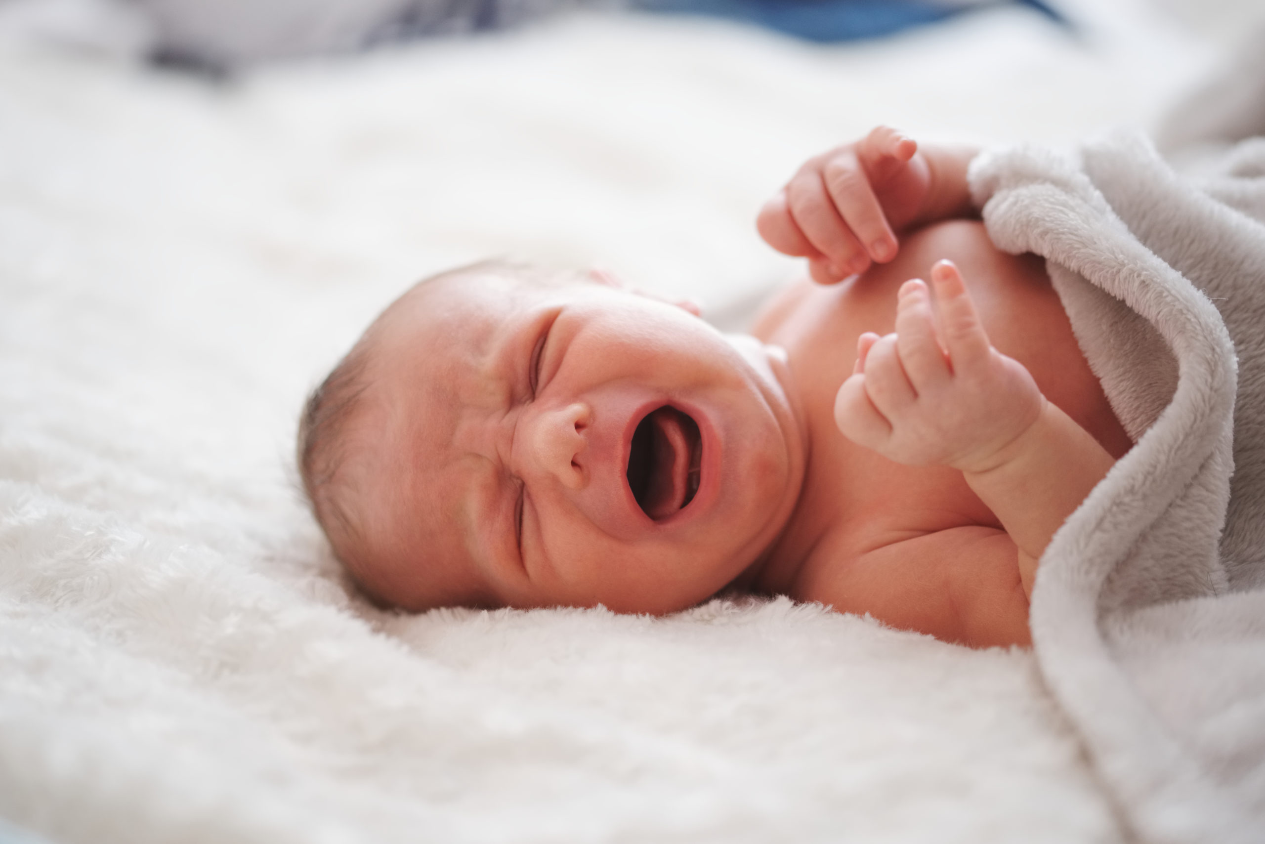 portrait of cute newborn baby at home