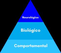 3-mecanismos-para-incentivar-os-hormônios-do-sono-bebe-dorminhoco-10k.png